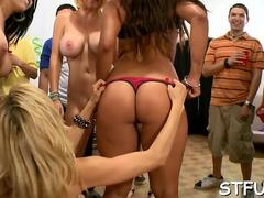 A group of naked horny babes teases college stallions